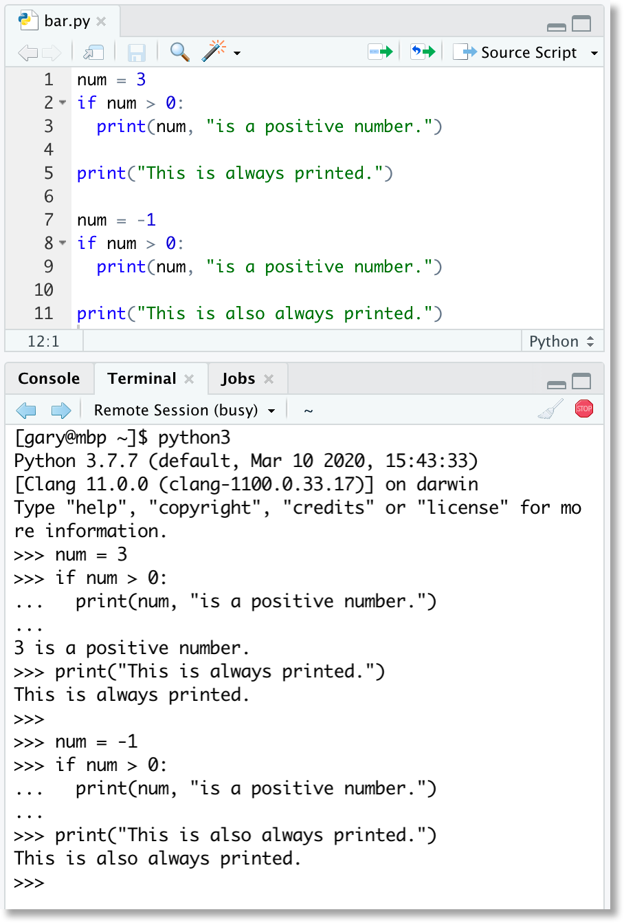 screenshot of a simple Python repl example